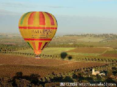 芭萝莎热气球冒险(Barossa Balloon Adventures)